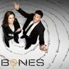 【観る前ガイド】「BONES  骨は語る」編【ネタバレなし】